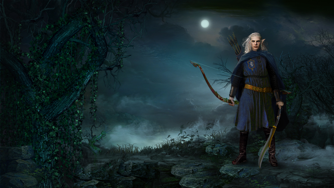 Warrior Elf book cover art custom painting affordable art